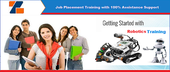 Best live project 6 weeks Summer Training on Robotics in Noida