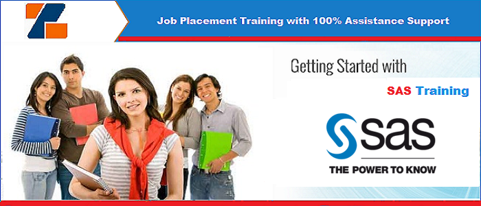Best Project based 6 Week Summer Training on SAS in Noida